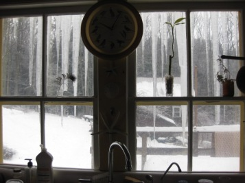 Kitchen Icicles